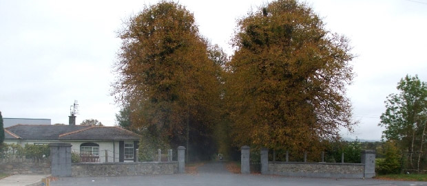 Gate Lodge and entrance to Tinvane House (Photo 2009)